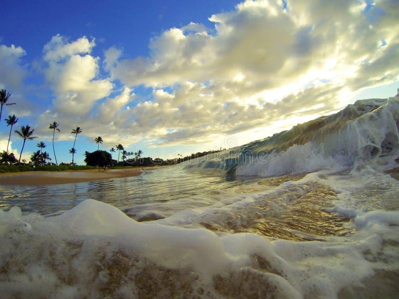 Hawaii-Strand-Wellen lizenzfreie stockfotografie
