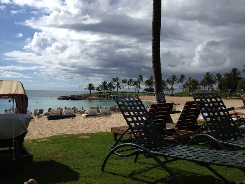 Hawaii strandlagun arkivbild
