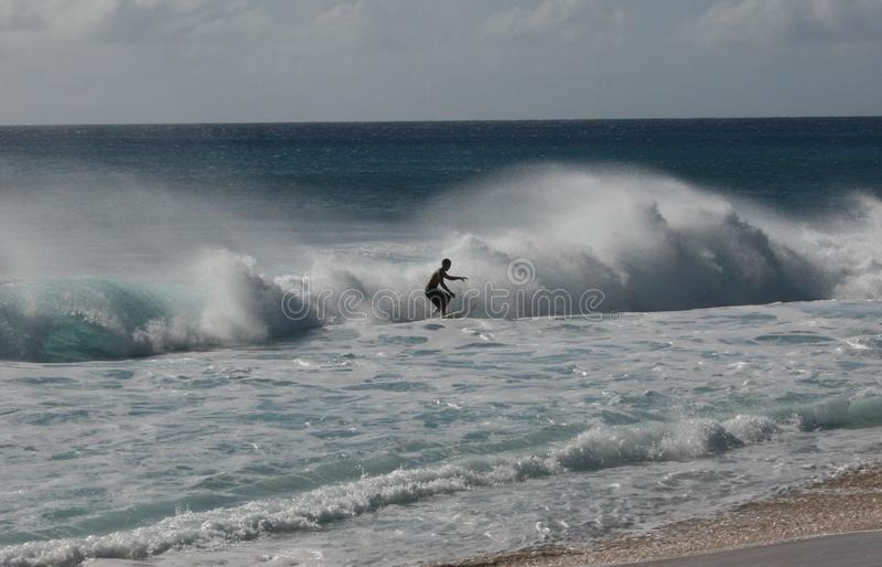 Hawaii surfers catching waves royalty free stock photography