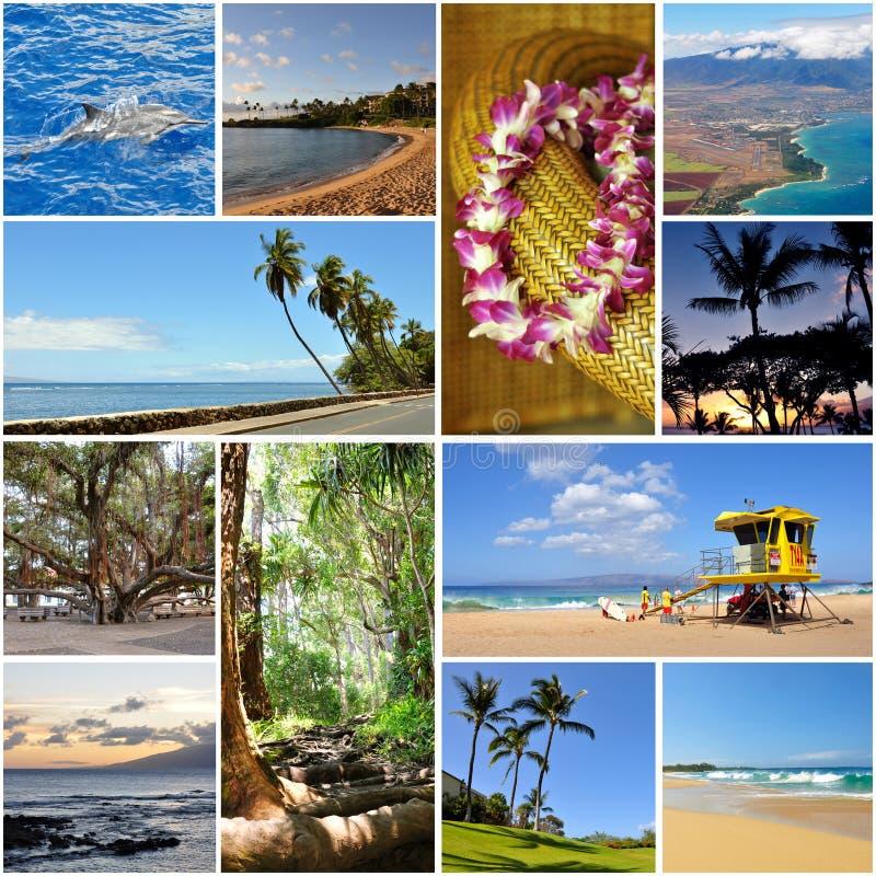 Hawaii travel collage stock photos
