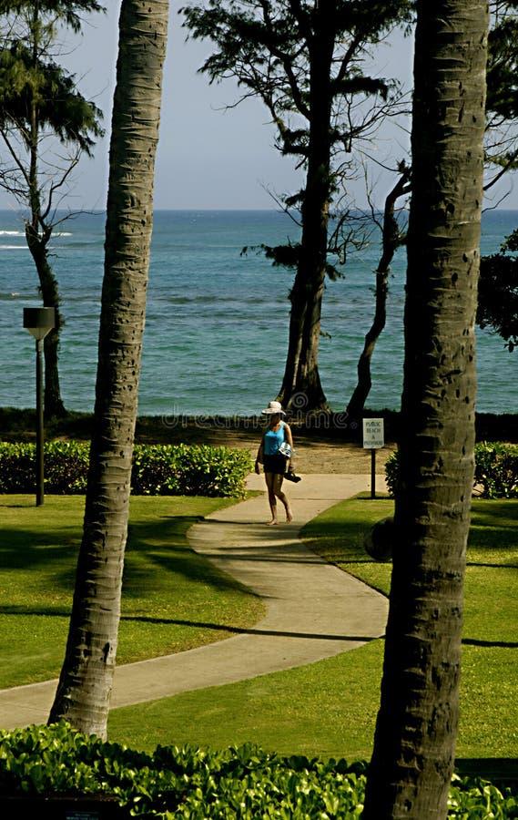 HAWAII_USA_PONO KAI-ERHOLUNGSORT-Besucher stockfoto