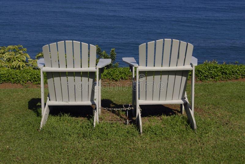 HAWAII_USA_vationers bij de klippentoevlucht royalty-vrije stock afbeelding