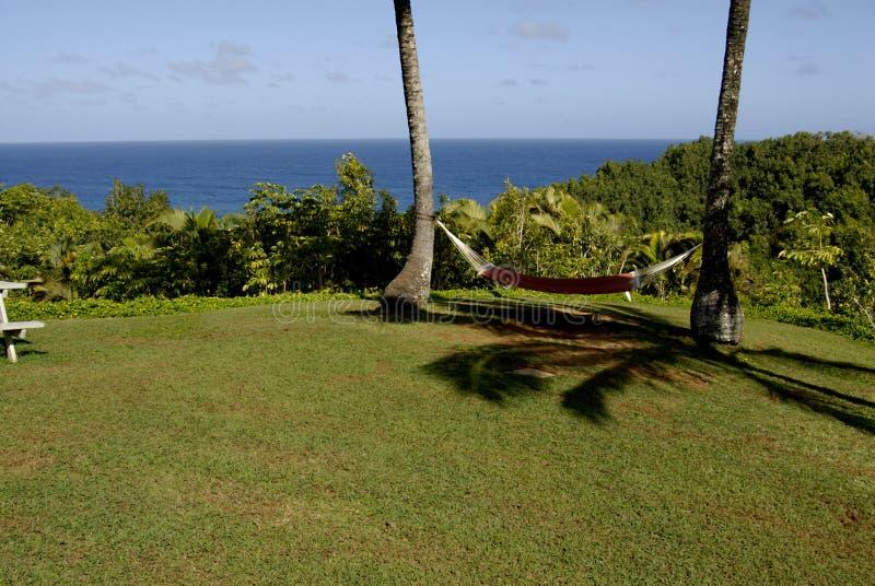 HAWAII_USA_vationers bij thecliftoevlucht royalty-vrije stock afbeeldingen
