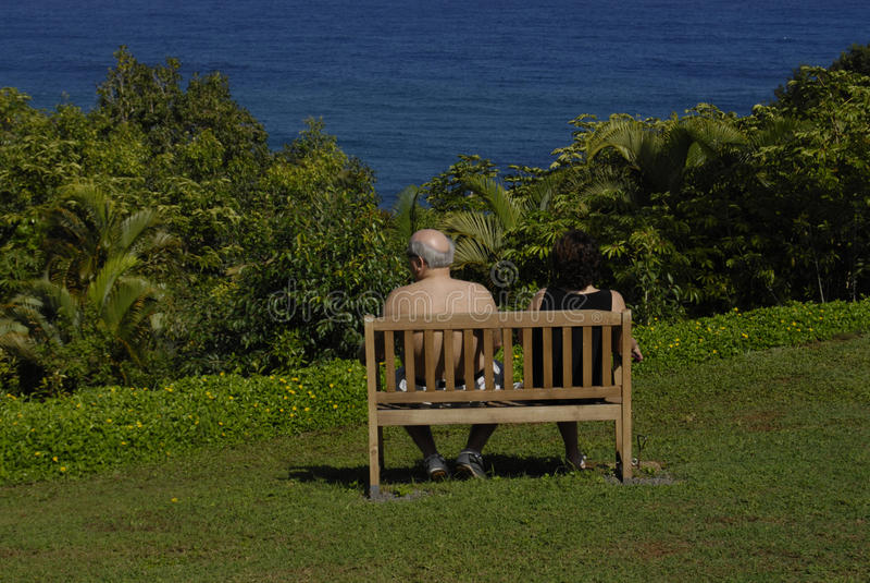 HAWAII_USA_vationers bij thecliftoevlucht royalty-vrije stock fotografie