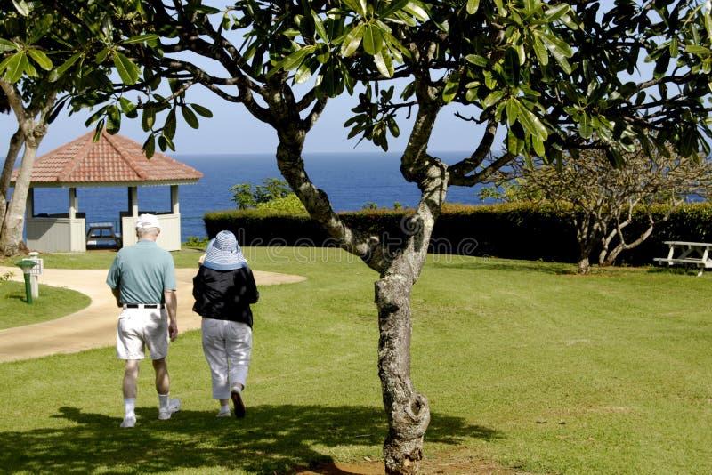 HAWAII_USA_vationers an theclif Erholungsort lizenzfreies stockfoto
