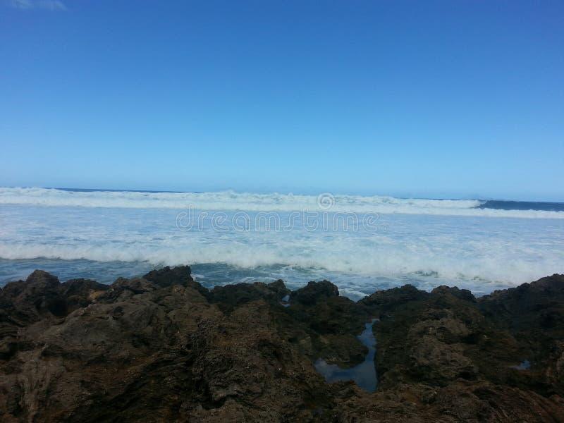 Hawaii-Wellen stockbilder