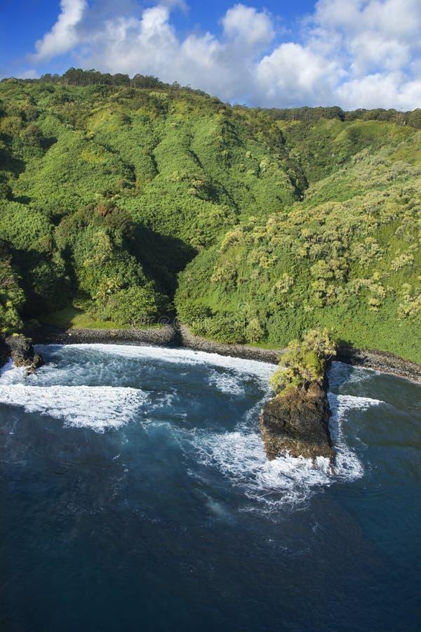 Hawaiiaanse kustlijn. stock foto