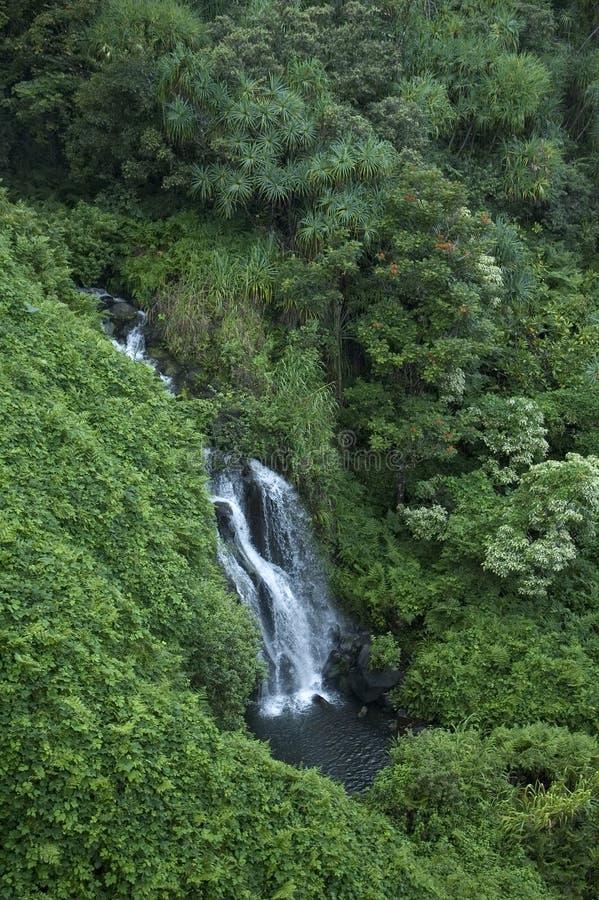 Hawaiiaanse Waterval Royalty-vrije Stock Afbeeldingen