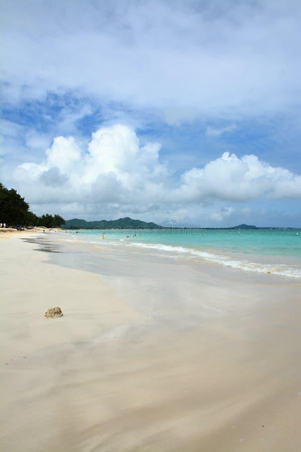 hawaiian пляжа стоковые изображения rf