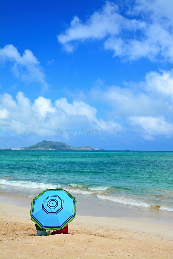 hawaiian пляжа стоковая фотография