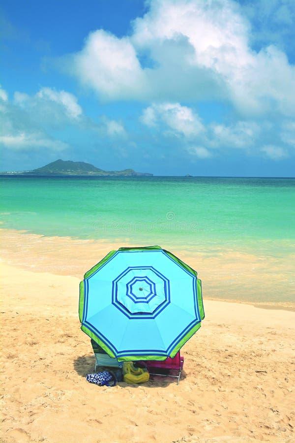hawaiian пляжа стоковое изображение