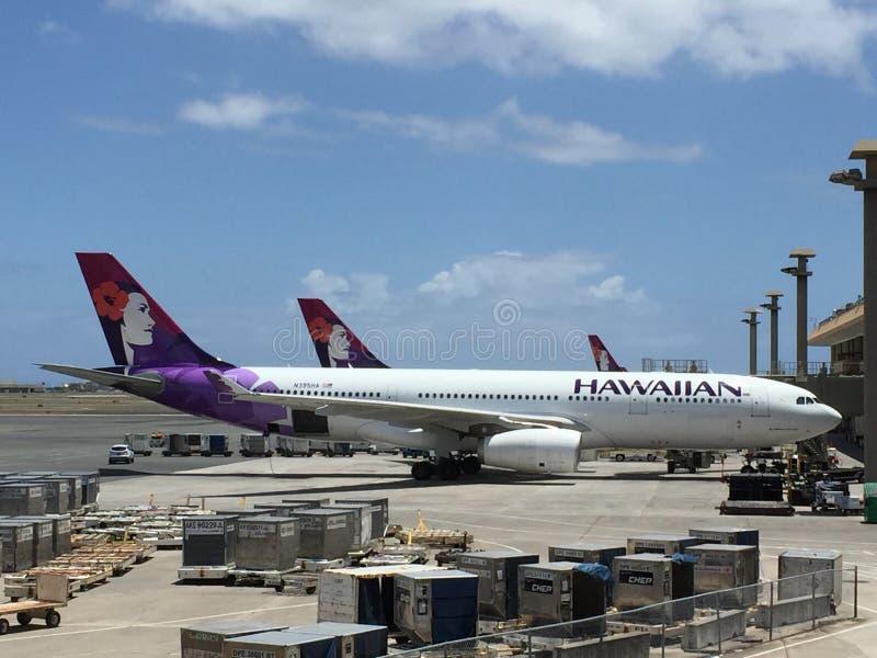 HAWAIIAN AIRLINES royaltyfri bild