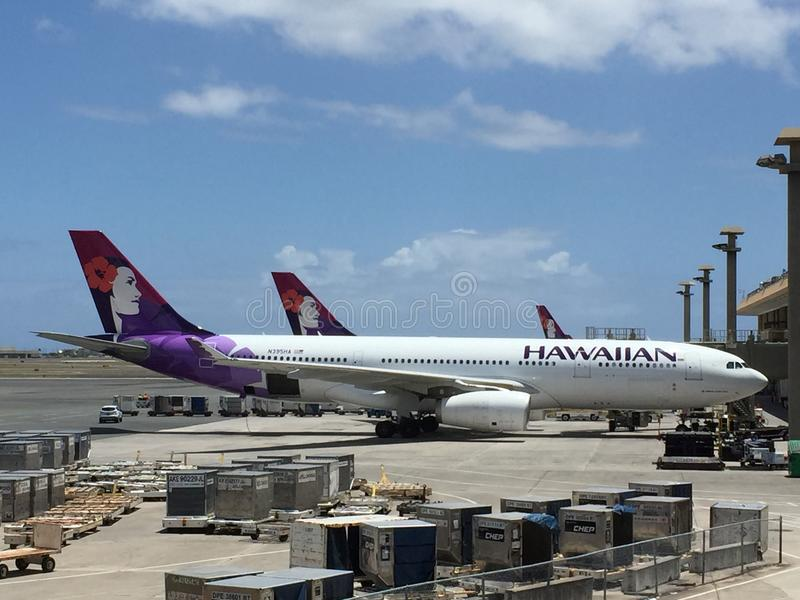 Hawaiian airlines royalty free stock image