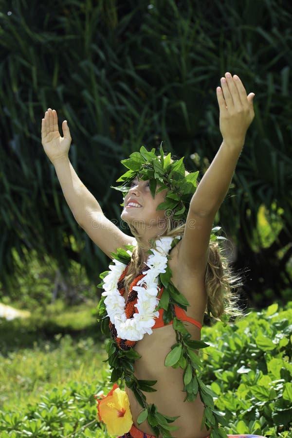 Download Hawaiian hula stock photo. Image of haku, garden, plants - 16721606