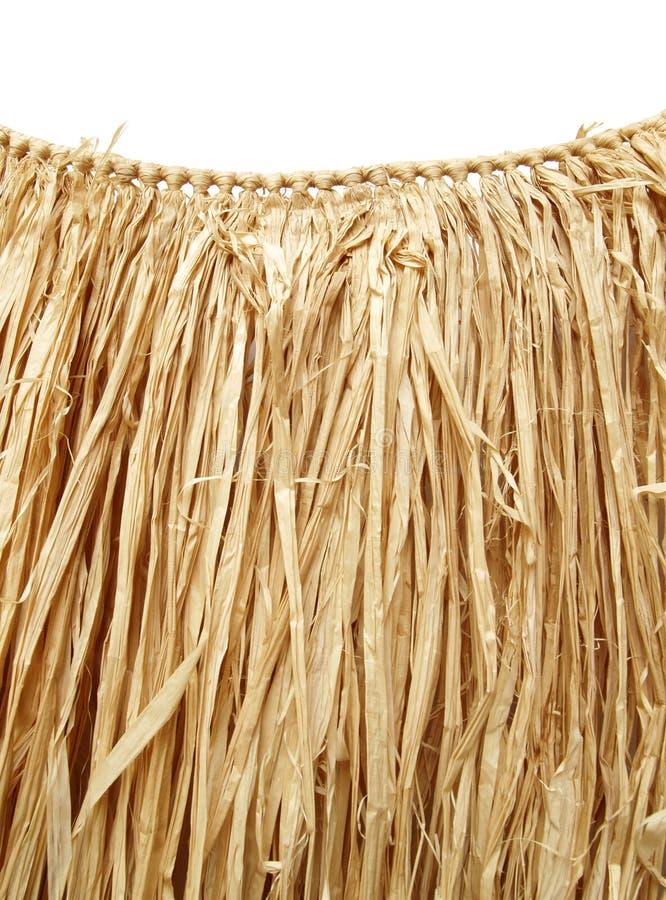 Download Hawaiian Luau - Grass Hula Skirt Stock Image - Image: 1172627