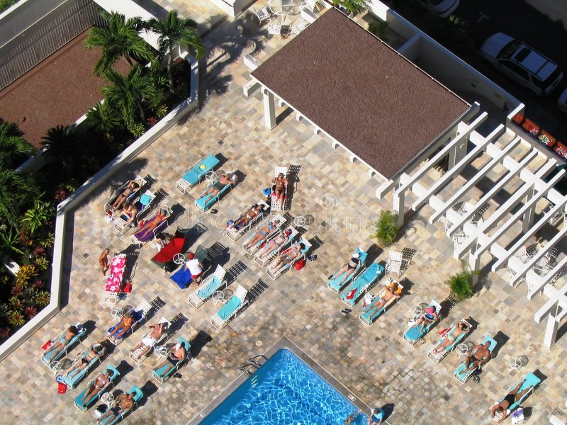 Hawaiian Sunbathers royalty free stock photography