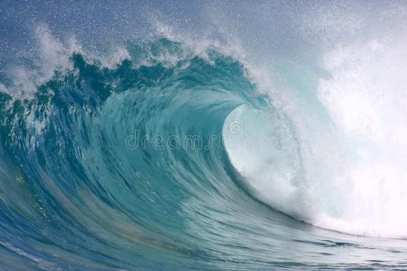Hawaiian wave royalty free stock photography