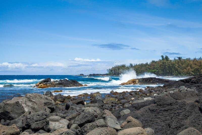 Hawaiis Lava Rock Coast mit tropischem Regenwald stockbild