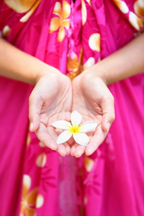 Hawaiische Blume in schalenförmigen Händen lizenzfreies stockbild