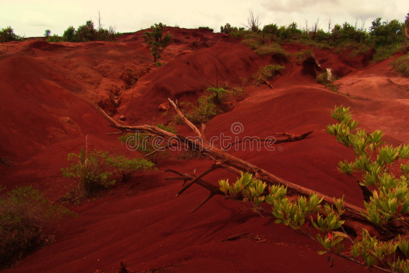 Hawaiische Wüste lizenzfreies stockfoto