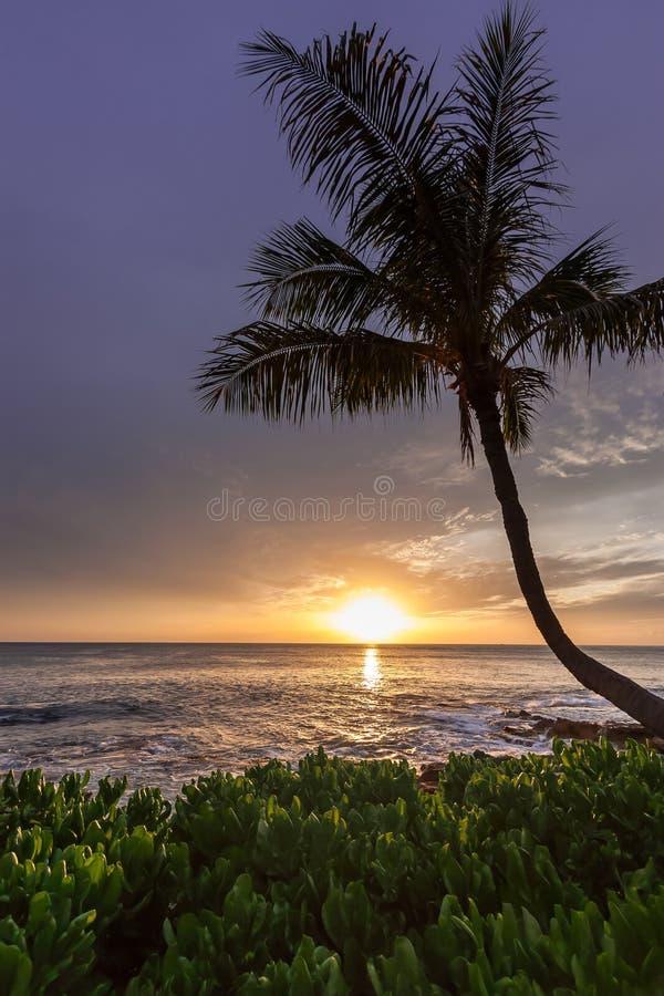 Hawaiischer Sonnenuntergang lizenzfreies stockbild