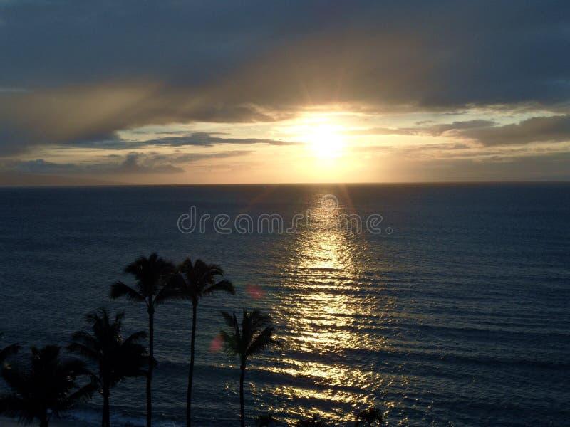 Hawaiischer Sonnenuntergang mit Reflexion und Palmen lizenzfreie stockbilder