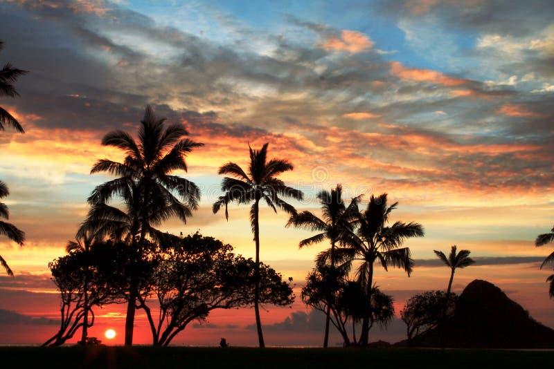 hawajczyka zmierzch zdjęcie royalty free