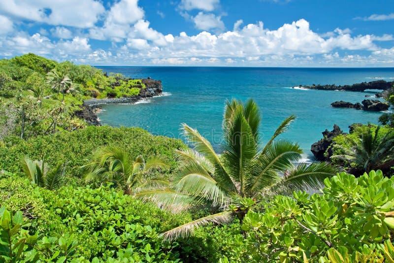 Hawaje raj na Maui wyspie zdjęcia stock