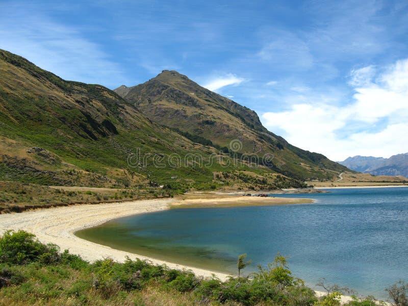 hawea湖新西兰 免版税图库摄影