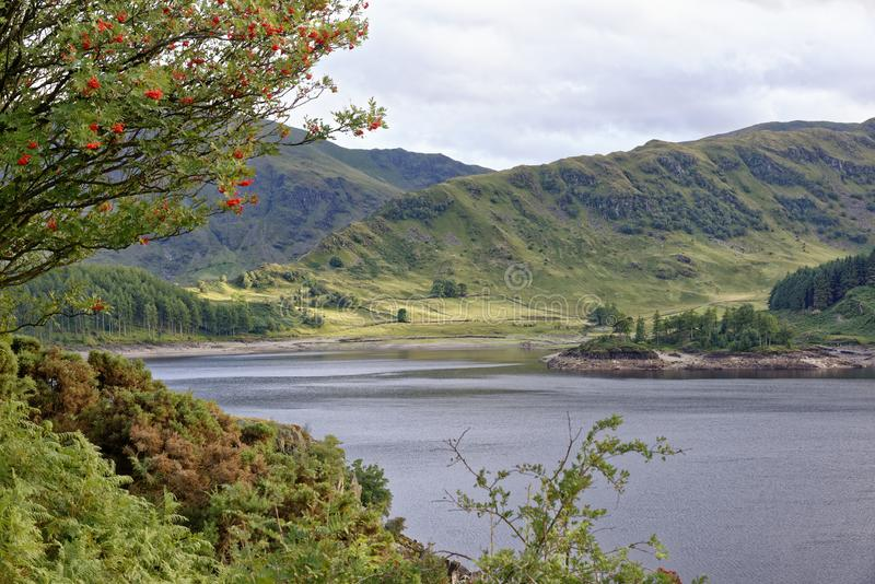 Haweswater & Riggindale stock images