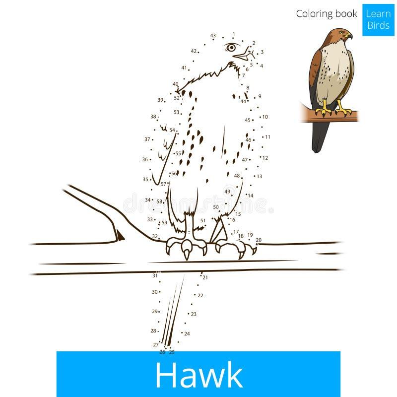hawk bird learn birds coloring book vector educational game illustration