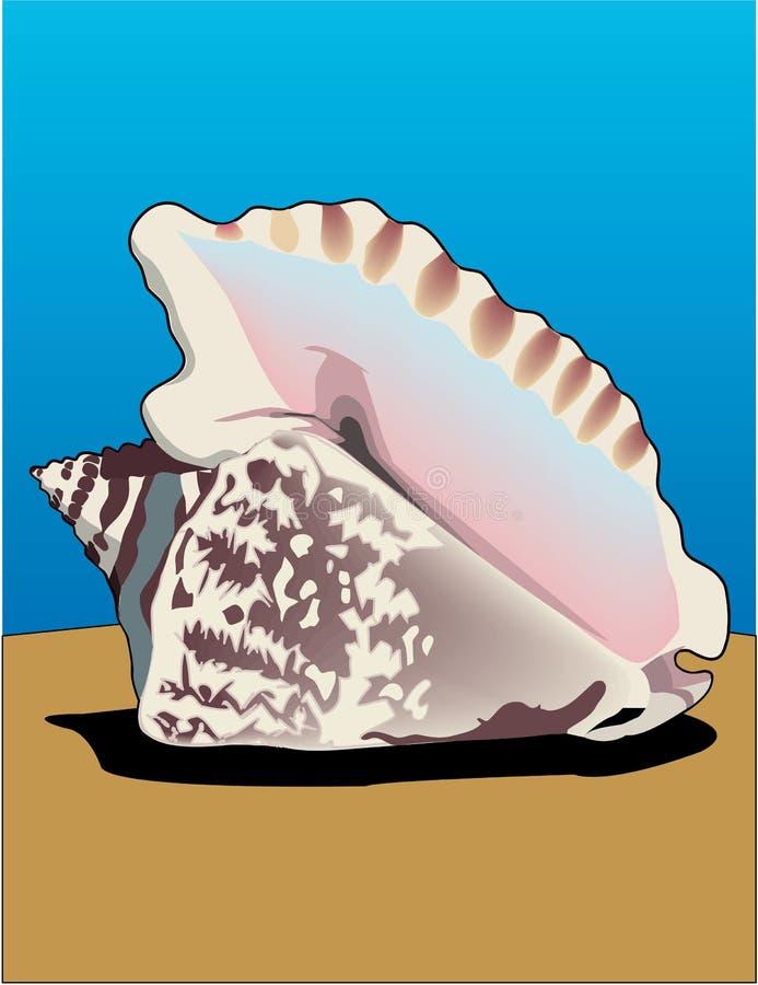 Hawk Winged Conch Illustration royalty-vrije illustratie