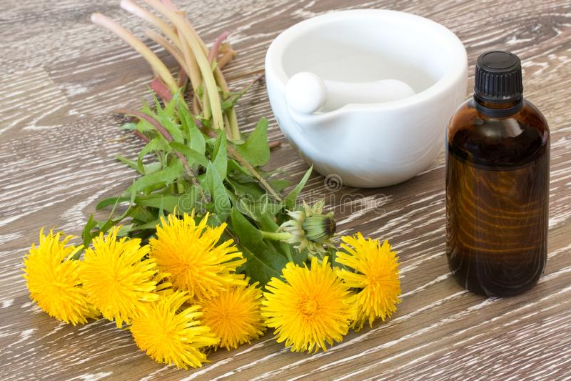 Blooming hawkbit with medicine bottle royalty free stock photos