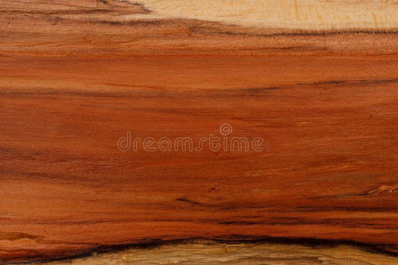 Hawthorn wood texture royalty free stock image