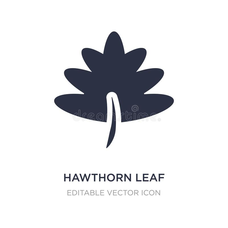 hawthorn leaf icon on white background. Simple element illustration from Nature concept royalty free illustration