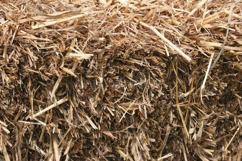 Download Hay stock image. Image of gold, bales, bale, hayride, golden - 145957