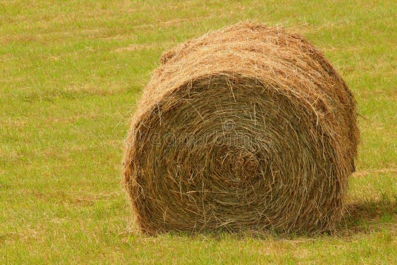 Download Hay stock photo. Image of farmland, gold, natural, hill - 26798882