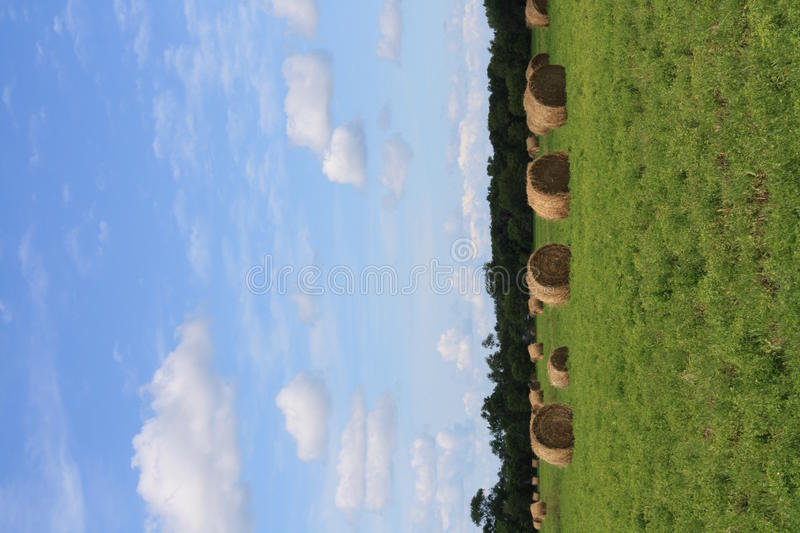 Download Hay Bale Stock Photo - Image: 10476880