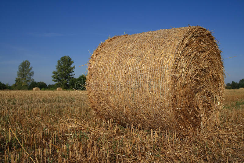 Download Hay Bale Stock Images - Image: 10675384