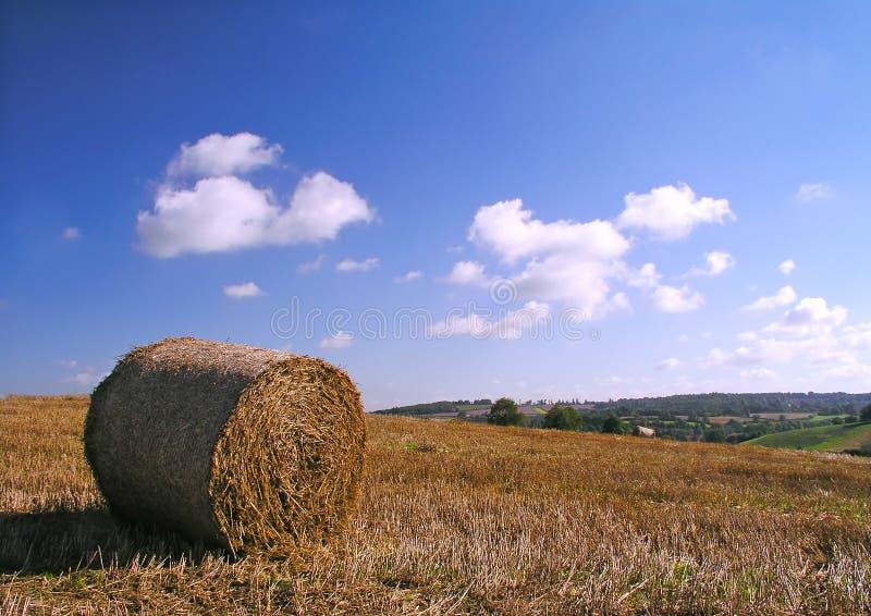 Hay Bale stock photography