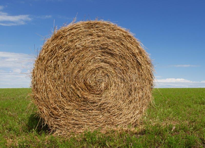 Hay Bale stock photo