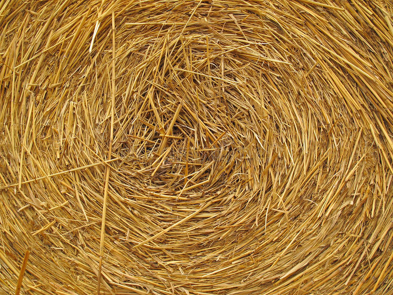 Download Hay bale background stock image. Image of organic, yellow - 24251699