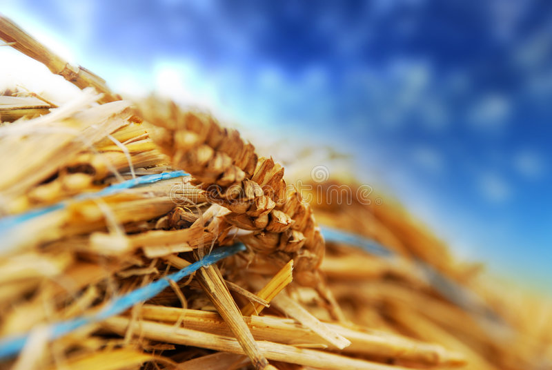 Hay Bale Close Up Royalty Free Stock Photography