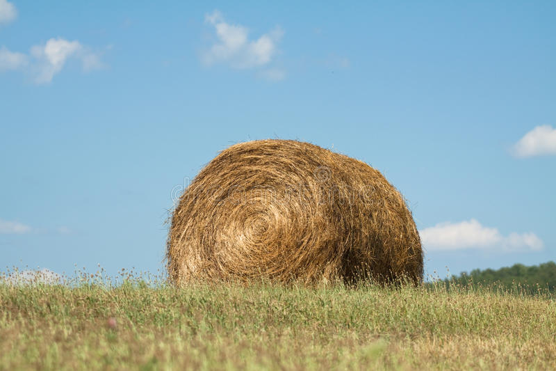 Hay Bale in field stock image