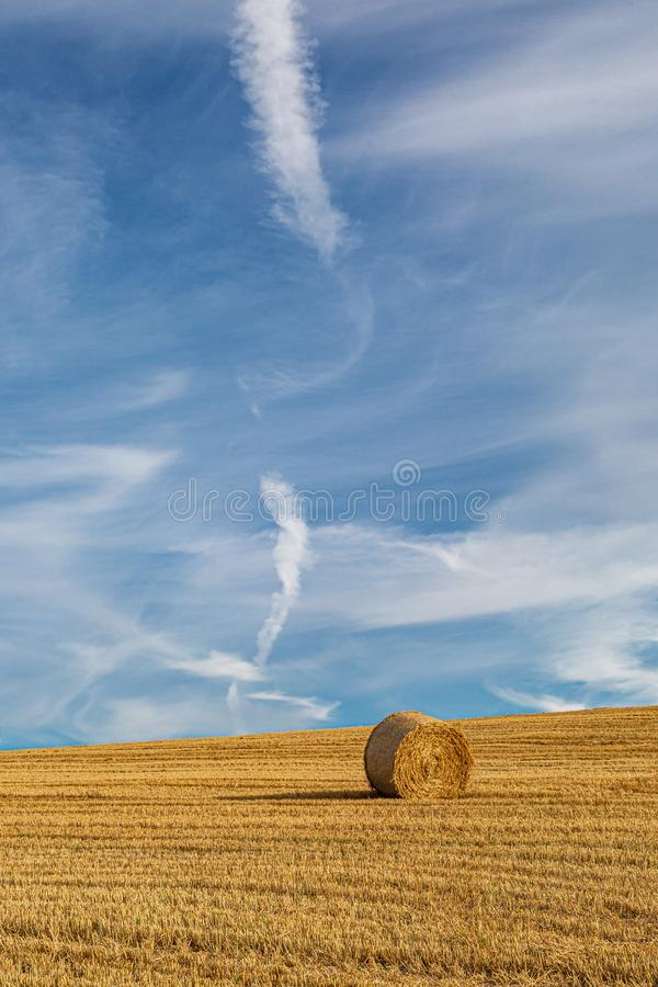 Harvest Time in Sussex. A hay bale in a field in Sussex, on a sunny summers day royalty free stock photo