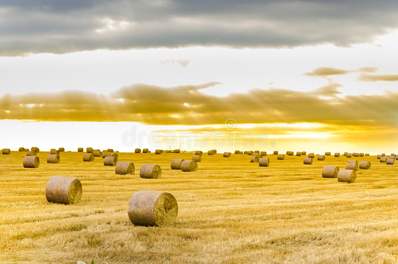 Hay bale in the foreground in rural field. Focus on hay bale in the foreground in rural field with dramatic sunrise sky stock images