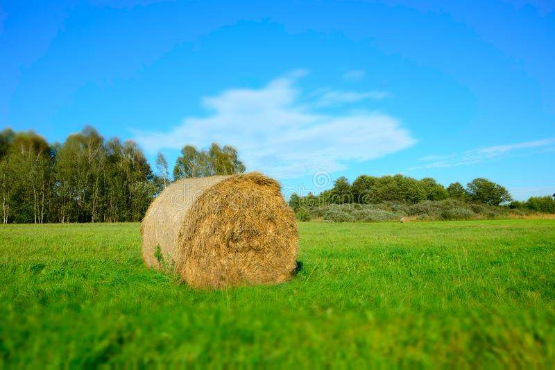 Hay bale lying on a green meadow, forest and white cloud on blue sky - blurry and contrasting colors royalty free stock image