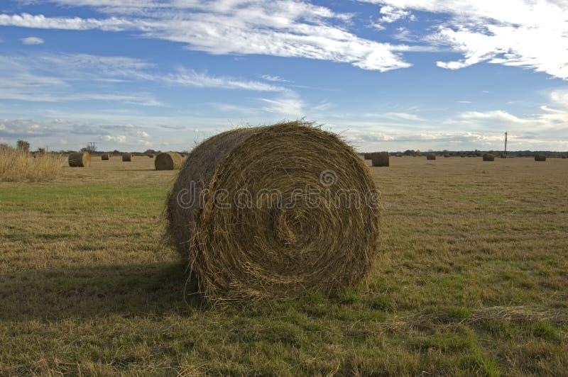 Hay Bale op Gebied royalty-vrije stock foto