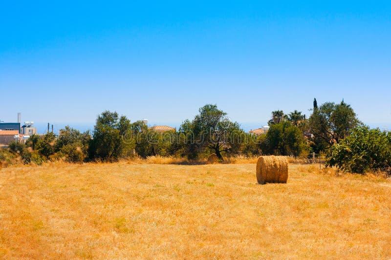 Download Hay Bale Roll en campo foto de archivo. Imagen de harvesting - 41902418