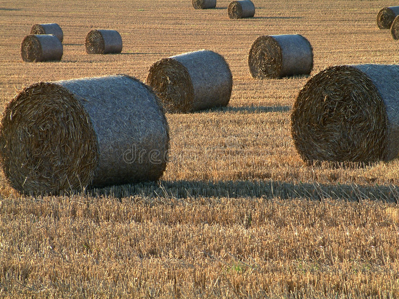 Download Hay bales stock image. Image of castle, bales, summer, farm - 4135